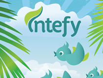 Intefy Summer Social Assets
