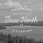 true-north-1-o